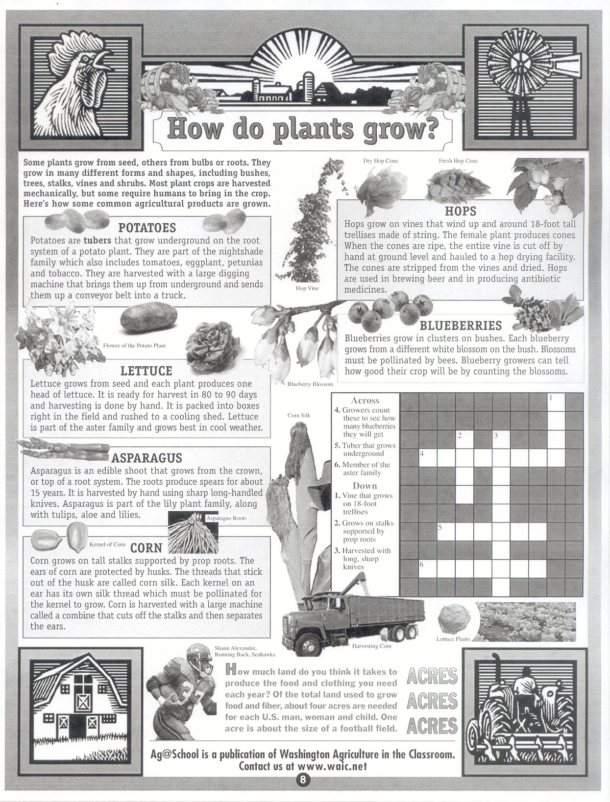 Agriculture education 6th grade middle school pathways gactae ag6 3how do plants grow robcynllc Gallery